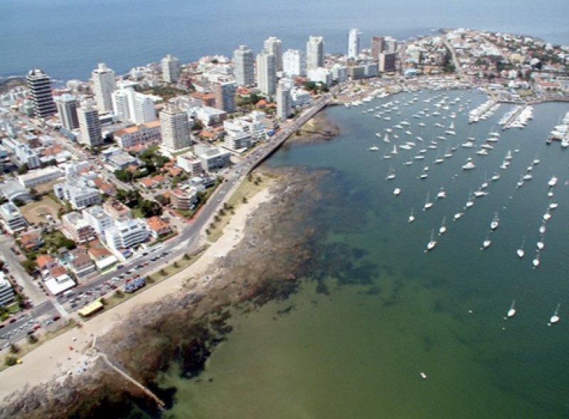 Inmobiliarios de Punta del Este confían en la fidelidad del público argentino