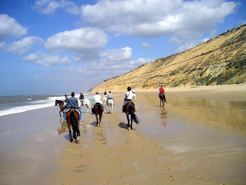 El ecoturismo, según la ONU, 'crea importantes oportunidades de conservación, protección y uso sostenible de la diversidad biológica y de las zonas naturales'.