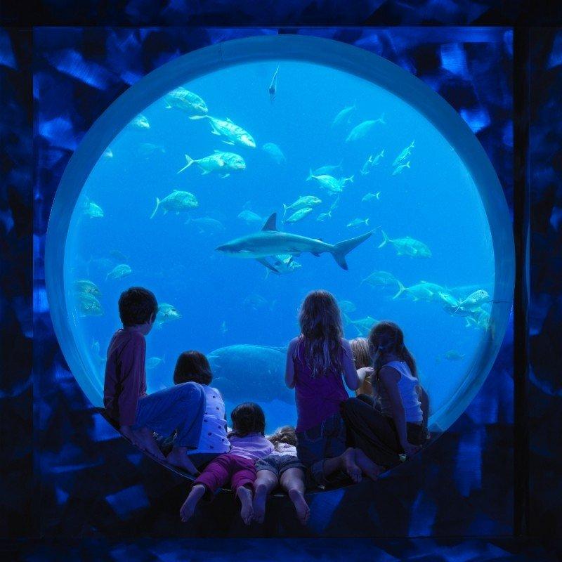 New Travelers y Atlantis se unen para promocionar Dubái