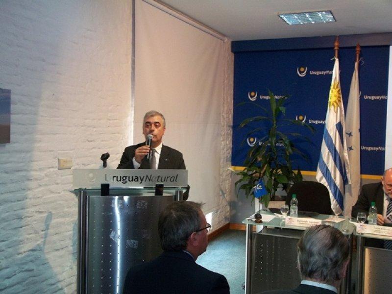 Fernando Cambón, presidente del comité organizador