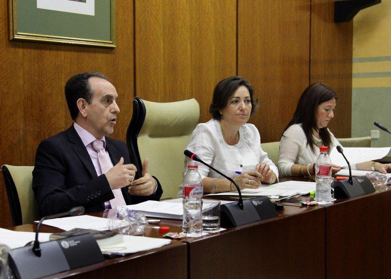 Rafael Rodríguez en su comparecencia en el Parlamento Andaluz.