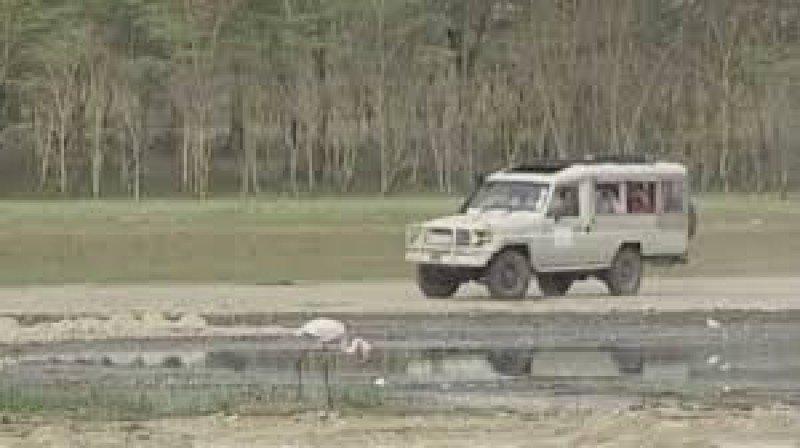 Los nueve turistas españoles que viajaban en la furgoneta siniestrada, venían de hacer un safari.