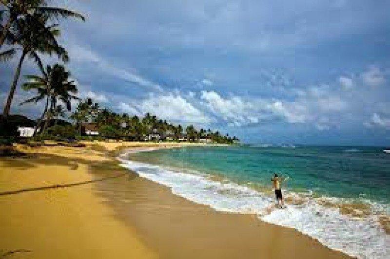 Las playas Hawai ha registrado ocho ataques en lo que va de año.