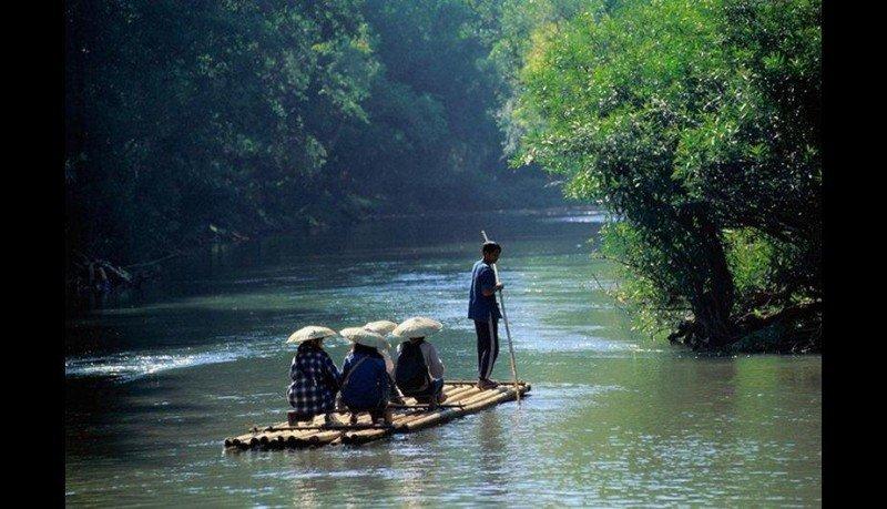 Construidas con cañas de bambú unidas fuertemente, atraviesan ríos inmensos en expediciones con total seguridad. Son ancestralmente utilizadas en países de Asia como Tailandia o de Latinoamérica como Perú.