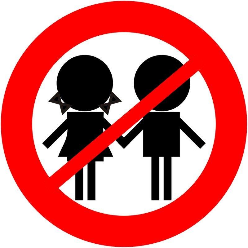 El adults only es una tendencia al alza porque 'lo que falla es la educación de los niños', según el profesor Albert Llorca. #shu#