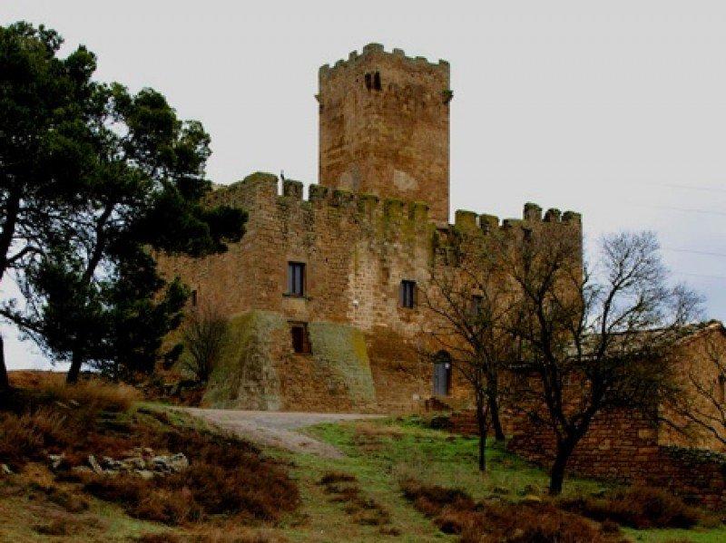 Uno de los castillos miembros de la asociación Monumenta.