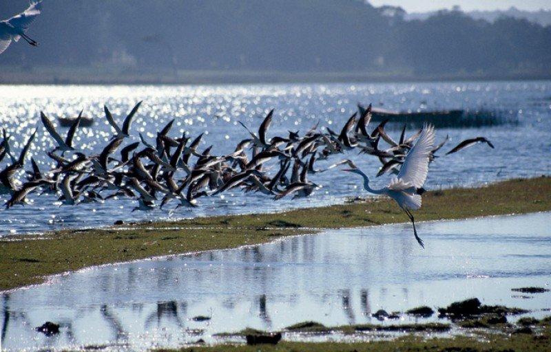 La ronda vincula a emprendimientos de turismo de naturaleza, de aventura, rural y social con operadores y agencias