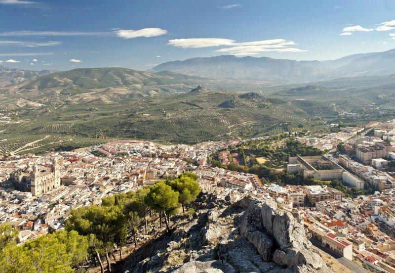 La oferta ilegal tiene un amplio volumen en Jaén. #shu#.