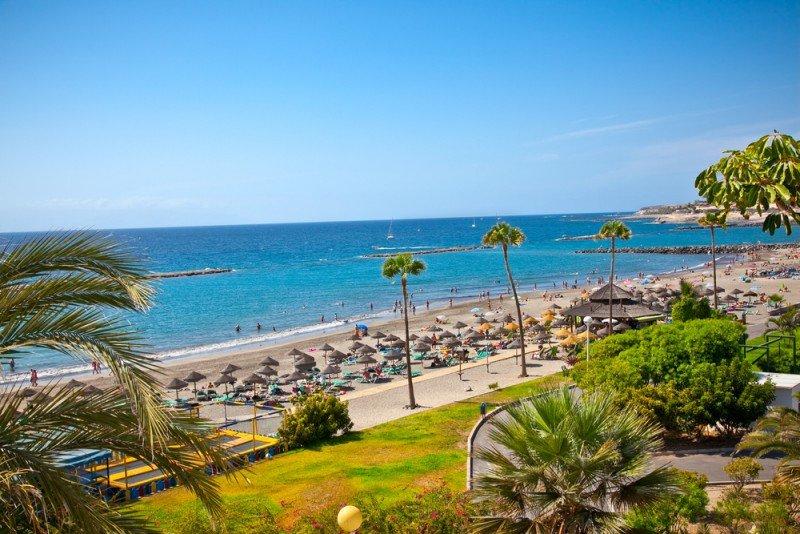 Tenerife ha sido el destino más demandado. #shu#.