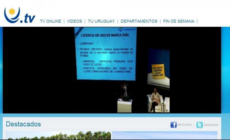 Presentación de la consultoría de los miembros del estudio Cikato.