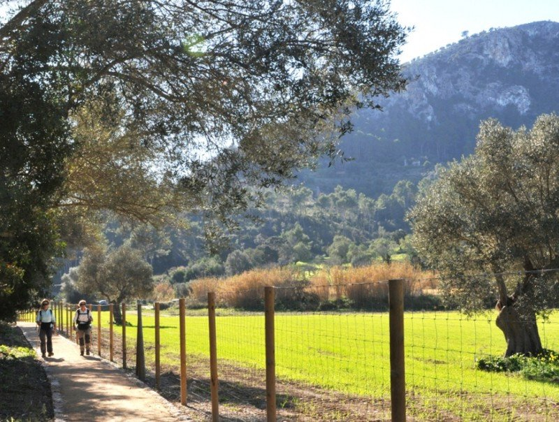 Práctica de senderismo en Calvià, Mallorca.
