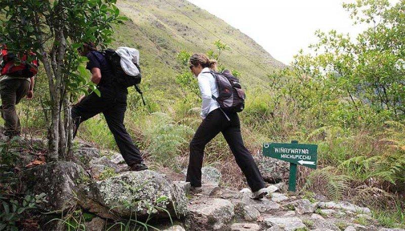 Camino del Inca.