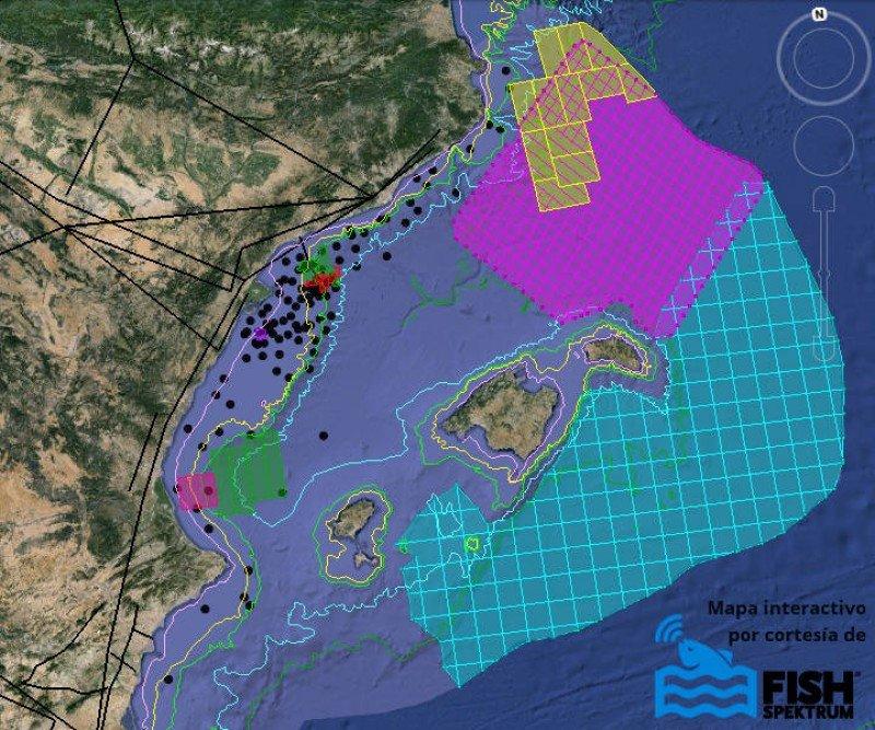 Las áreas cuadriculadas en azul claro y rosa indican las zonas afectadas por prospecciones petrolíferas. Fuente: http://alianzamarblava.org
