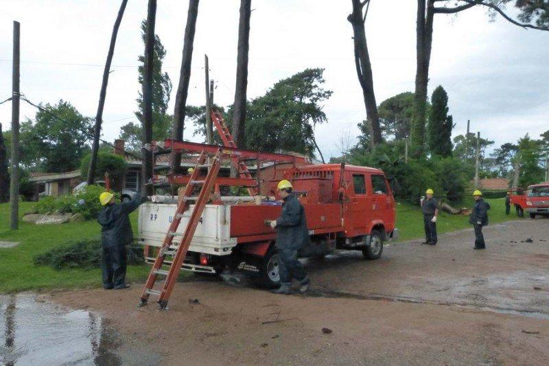 Ramas caídas afectaron tendido eléctrico en La Barra.