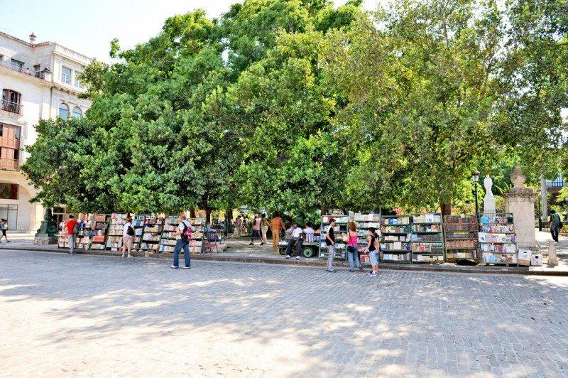 Los ingresos por turismo han crecido un 2%. #shu#