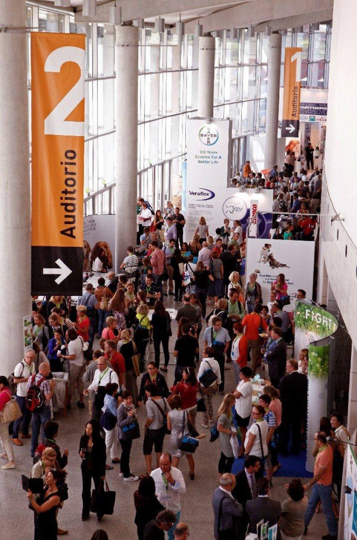 El ejercicio 2013 mostró una disminución en el número de congresos en España.