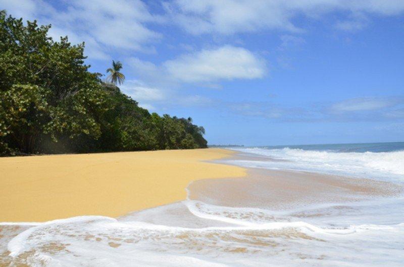 Nuevo complejo hotelero en el Caribe panameño deberá respetar la ecología. #shu#