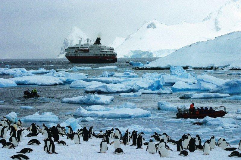 Cada vez se ofrecen más viajes en crucero o en avión al continente blanco, donde está expresamente prohibido explotar los recursos naturales.