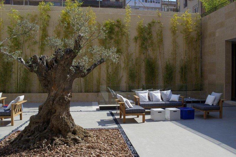 El jardín con terraza exterior alberga un olivo centenario.