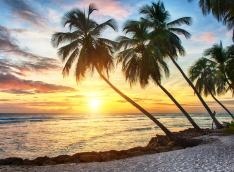 Países del Caribe avanzan en acuerdos de protección ambiental. #shu#