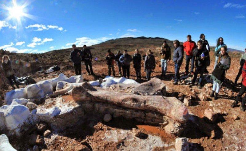 Fueron hallados más de 200 fósiles.