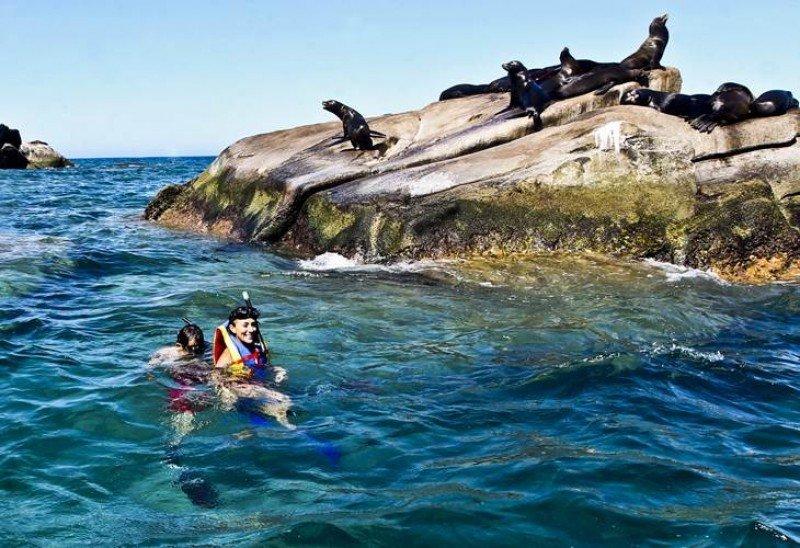 Cabo Pulmo, en Baja California, es una Reserva de la Humanidad protegida por UNESCO: