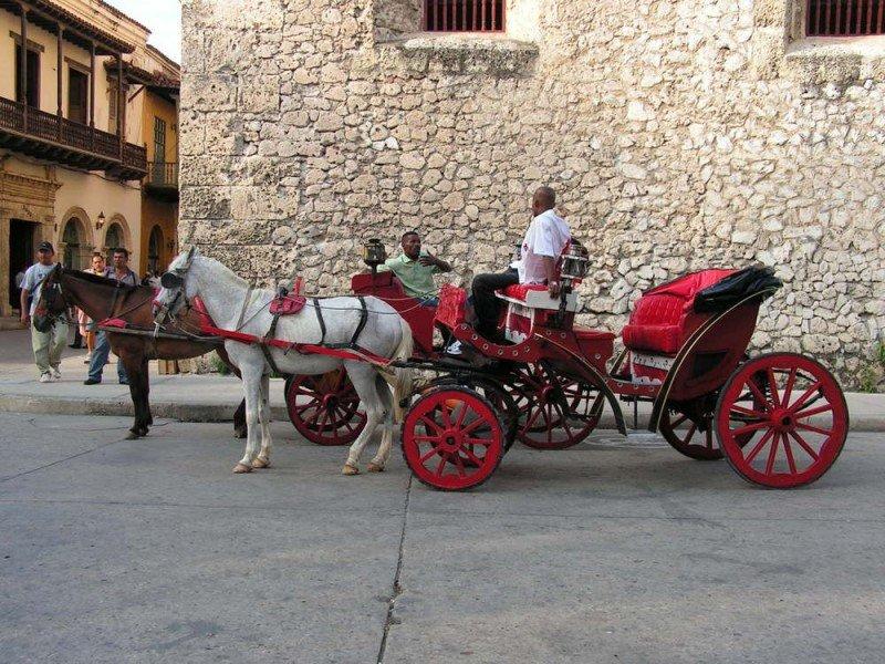 Cartagena no suspenderá el servicio de coches turísticos de caballos. #shu#