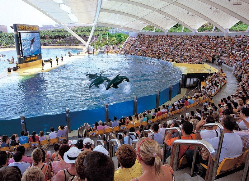 Loro Parque, mejor zoo de Europa según los usuarios de TripAdvisor