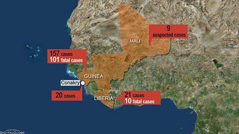 El Ébola podría afectar a la demanda del sector aéreo, según la IATA