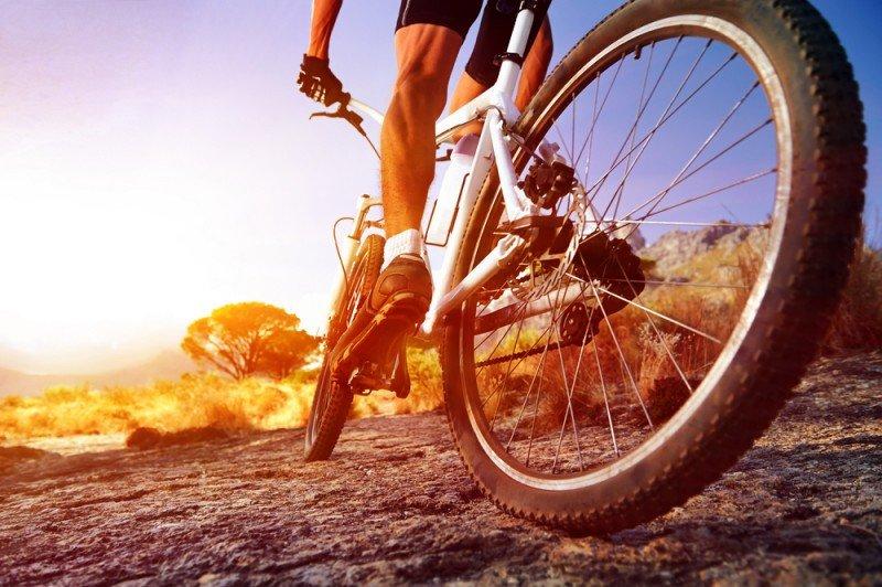 El turoperador estaba especializado en cicloturismo. #shu#.