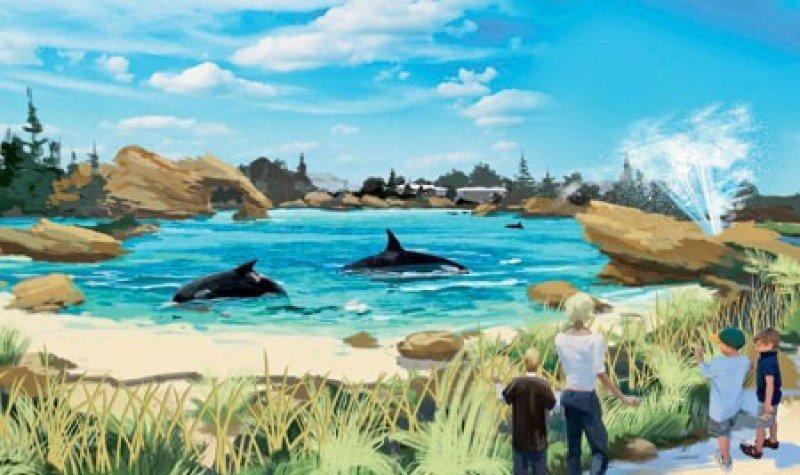 Ilustración artística que recrea cómo será la nueva piscina de las orcas en SeaWorld.