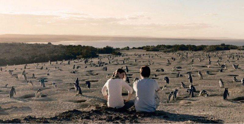 Punta Tombo, la mayor colonia de pingüinos magallánicos y atractivo de Chubut.