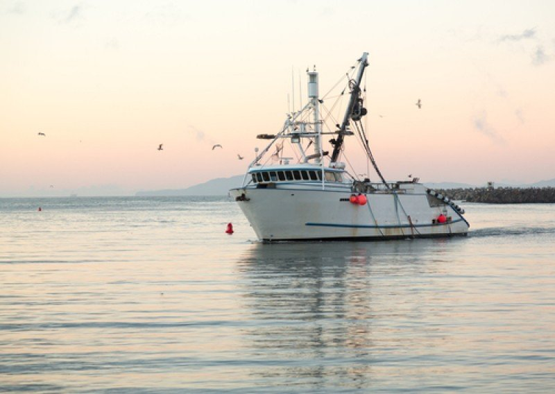 El proyecto de pesca-turismo pasará por el Senado. #shu#