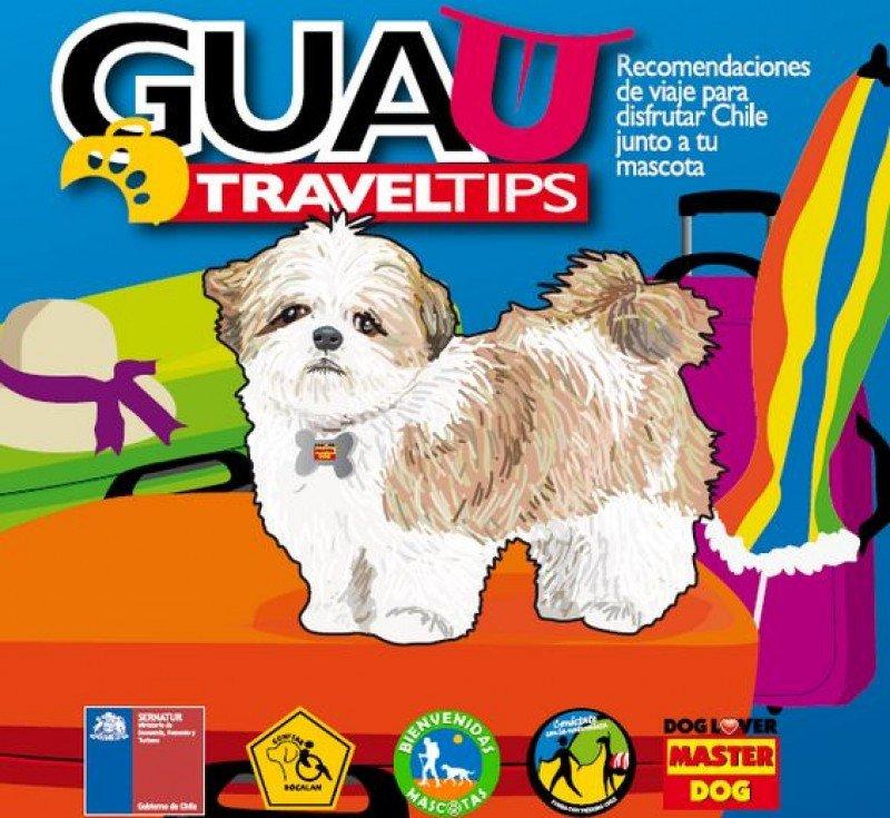 Chile lanza guía para viajar con mascotas