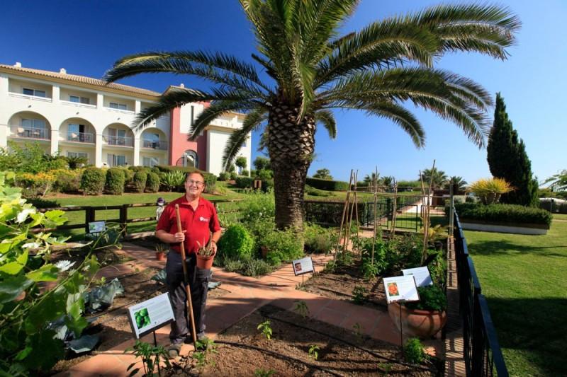 Una de las medidas implantadas en Fuerte Hoteles es el desarrollo del huerto ecológico.
