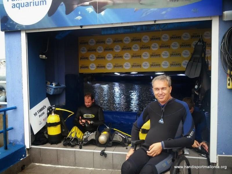 Buceo con tiburones, una de las nuevas actividades ofrecidas por Handisport Mallorca.