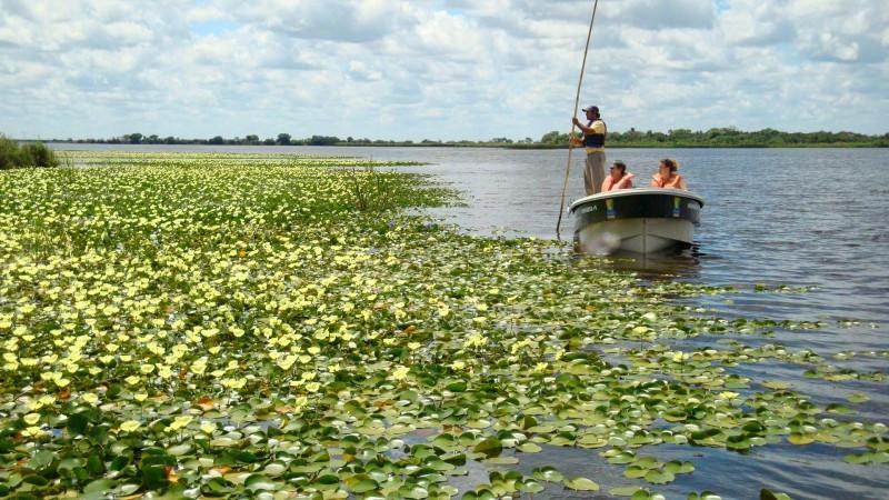 Esteros del Iberá, Corrientes. (Foto: Locosporviajar.net)