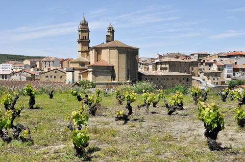 La Rioja Alavesa acoge el cuarto Foro de Turismo Enogastronómico | Economía
