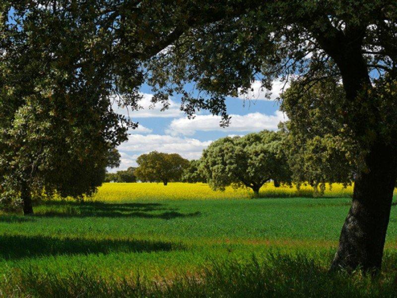 La campaña pretende impulsar la imagen de Extremadura como destino de interior. #shu#