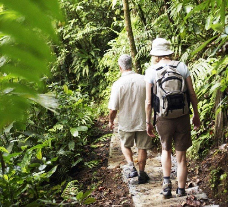 Expedición en el bosque tropical de Costa Rica. ##shu#
