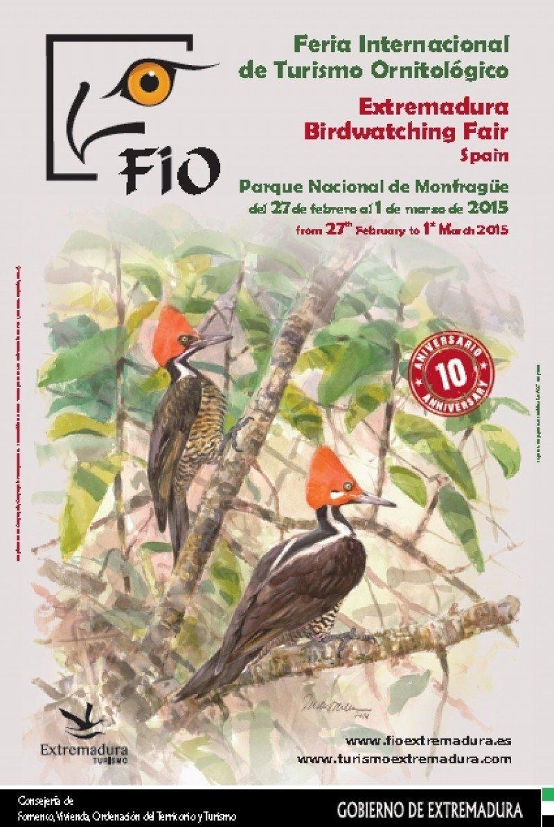En homenaje a Latinoamérica, el cartel de esta edición está protagonizado por aves oriundas de Ecuador y Perú.