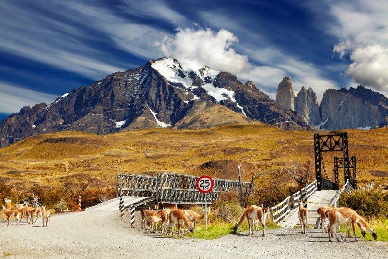 Torres del Paine. #shu#