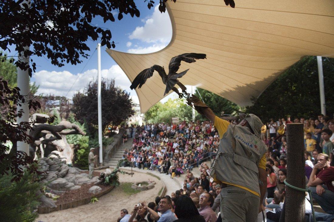 El parque cuenta con más de 12.000 animales de 184 especies.