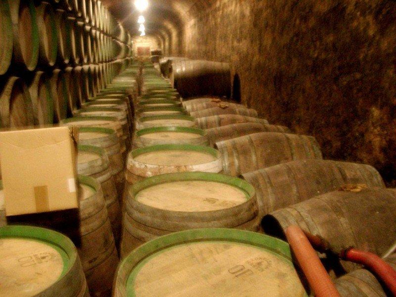 La Rioja necesita poner en valor su oferta turística