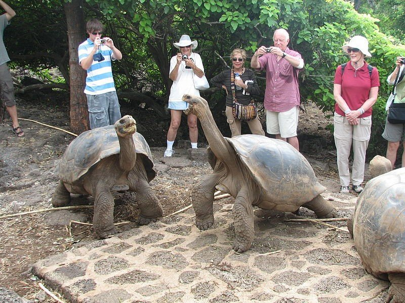 Estados Unidos y Reino Unido son los países que más turistas enviaron a Galápagos.