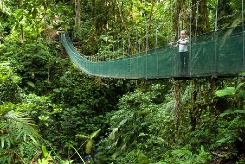El ecoturismo ha diferenciado a Costa Rica del resto de los destinos de la zona de Centroamérica y el Caribe. #shu#
