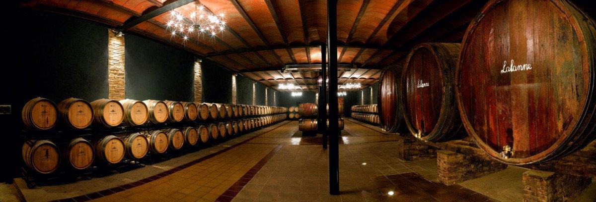 Ruta del vino Somontano.
