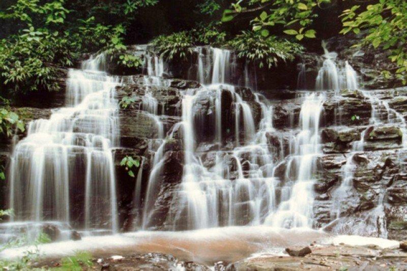 Parque Nacional Natural Los Katíos, en Colombia