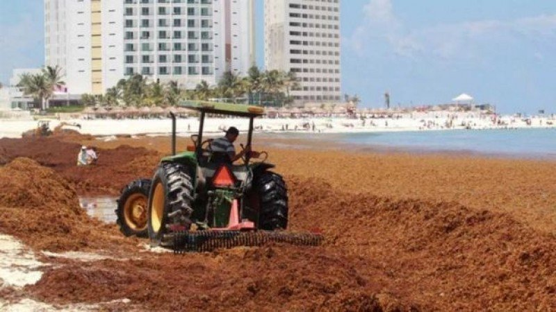 Hoteles y gobierno local contrataron personal para limpiar las playas. Foto: Televisa.
