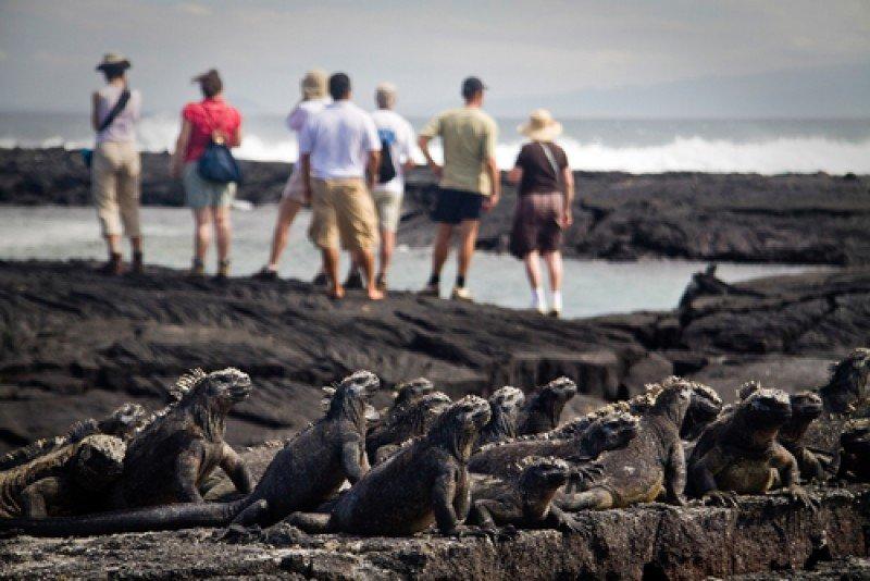 Islas Galápagos, Ecuador. #shu#
